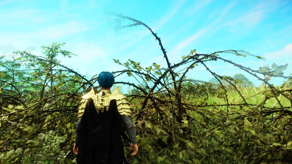 Где найти Briar branches (ветки шиповника) в New World